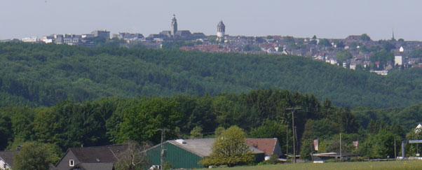 Blick auf Remscheid von Lüttringhausen / Blume
